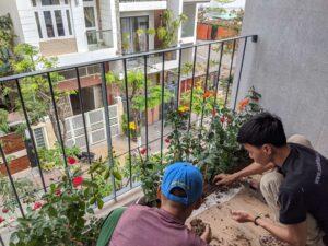 Thi công vườn cây trang trí ban công chung cư