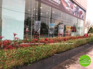 Gia Thịnh Hưng-cung cấp cây xanh và thi công cảnh quan mặt tiền và bên trong showroom