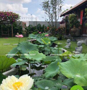 Gia Thịnh Hưng- Biệt thự Chị Phùng Anh, Khu Biệt Thự Đảo Nổi, Đà Nẵng 8