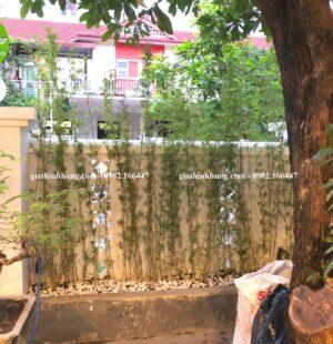 Gia Thịnh Hưng-Biệt thự anh Công, Phúc Lộc Viên, Đà Nẵng1