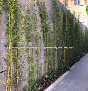 Biệt thự Cô Hương Euro Villa 2 – Hòa Xuân – TP Đà Nẵng 4