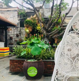 Gia Thinh Hung-Nhà hàng 다낭기와집 GIWAZIP 27 Nguyễn Chí Thanh, Đà Nẵng 9